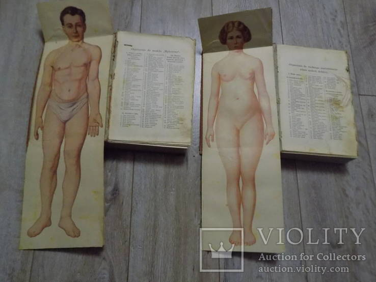 Медична енциклопедія на польській 1930 в двох томах, фото №3