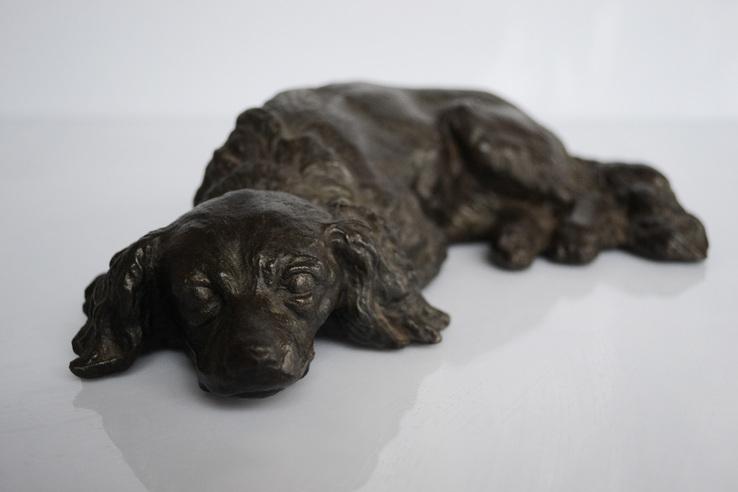 Охотничий пес лежащий.