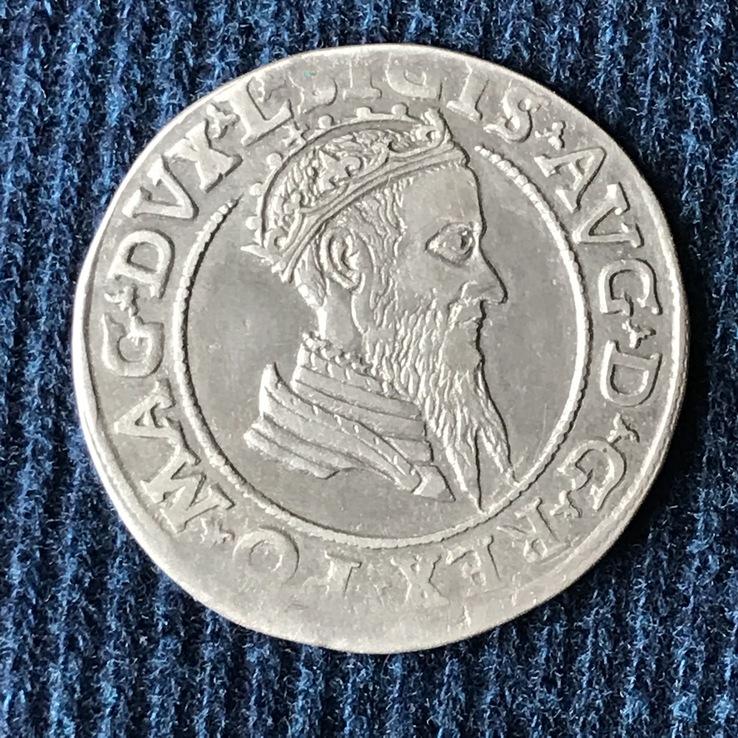 Чворак 1569 год, Литва.