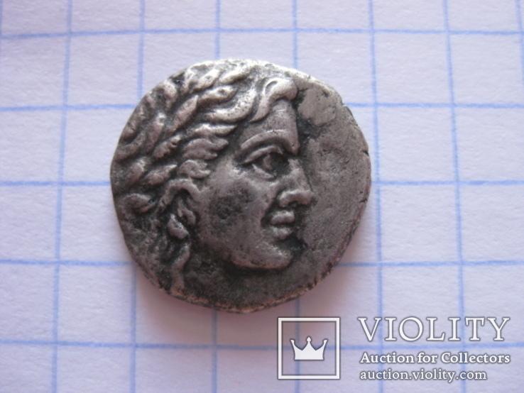 Драхма Пантикапея., фото №3