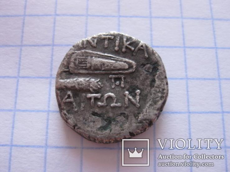 Драхма Пантикапея., фото №5
