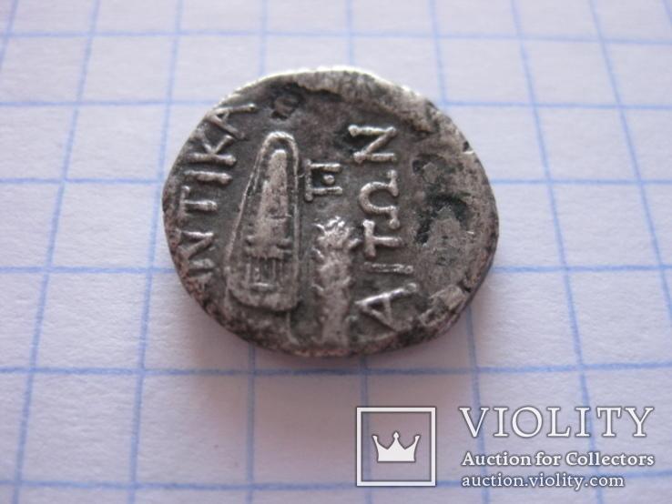 Драхма Пантикапея., фото №7
