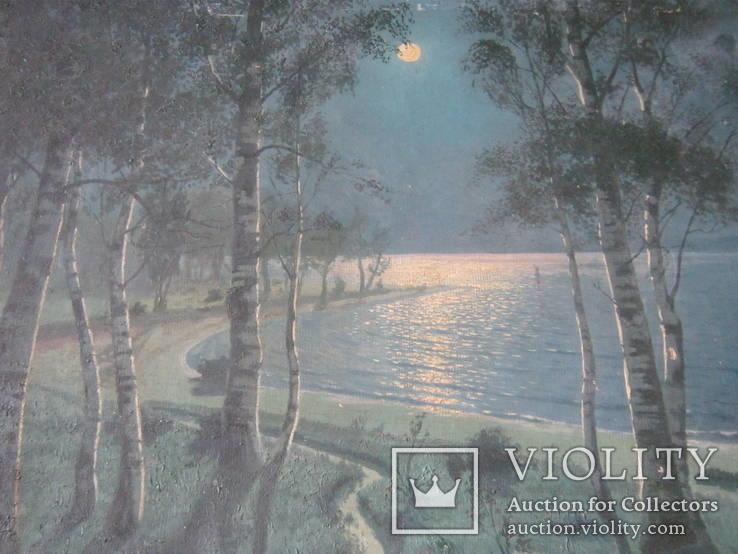 """Светлая ночь"" х.м.,70х100см.,1915г.,авт., фото №5"