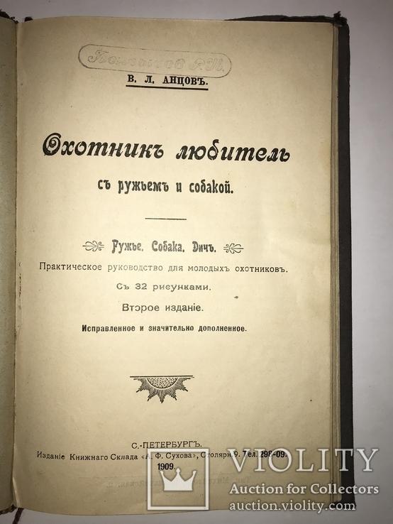 1909 Охота Ружья Собака Дичь, фото №11