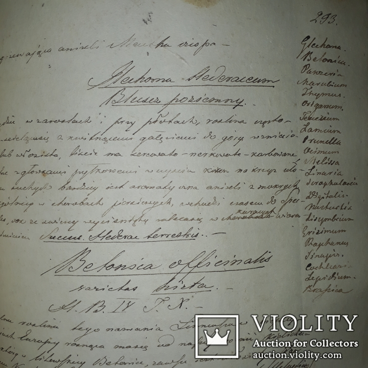 1839 Рукопись ботаника-флориста Станислава Гоского, фото №10