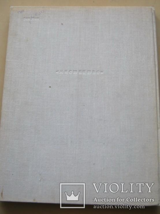 Державний микололаiвський художнiй музей им. В.В.Верещагина, фото №13