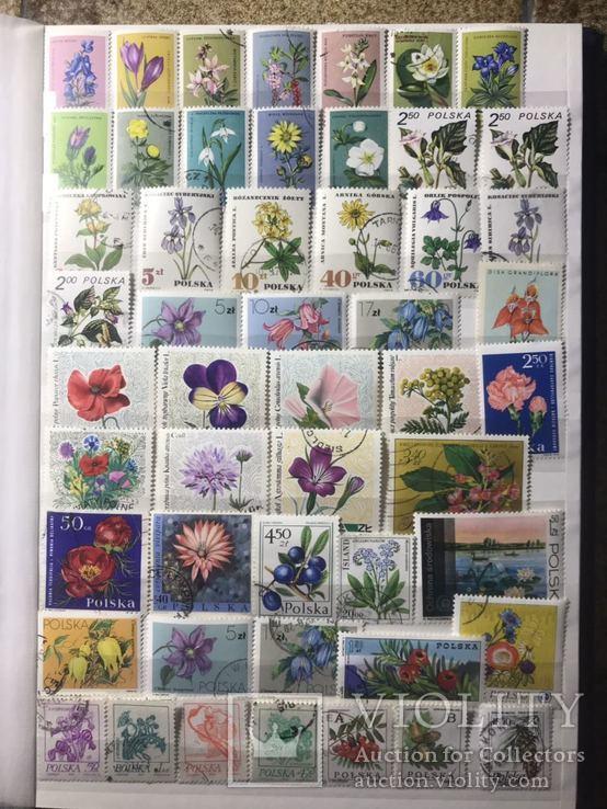 Альбом з поштовими марками флора і фауна 585шт.,різне.