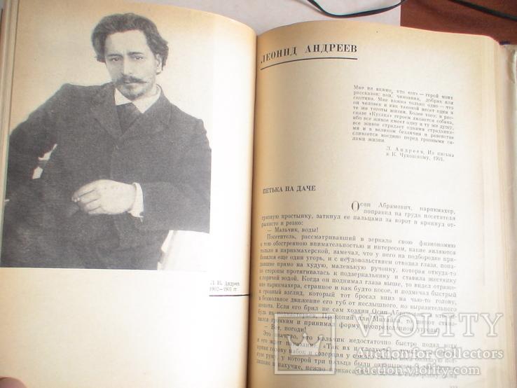 Русская литература 20 век (Дореволюционный период) 1966р., фото №7