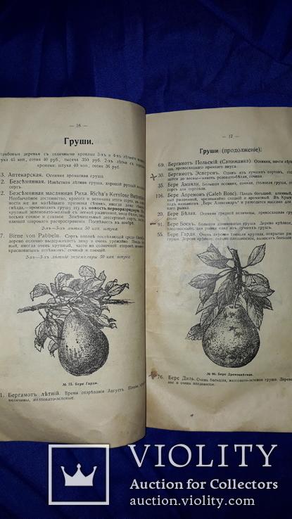 1900 Каталог садоводства А.К.Гринке в Харькове, фото №7