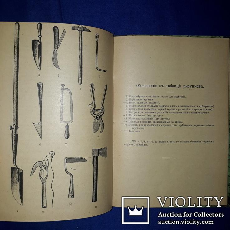 1912 Гербарий. Руководство к собиранию и засушиванию растений