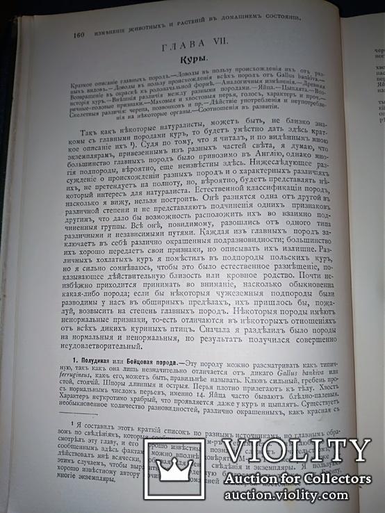 1911 Иллюстрированое сочинение Дарвина, фото №7