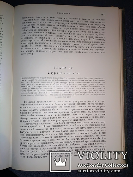 1911 Иллюстрированое сочинение Дарвина, фото №12