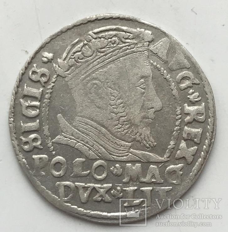 Грош 1546, Литва