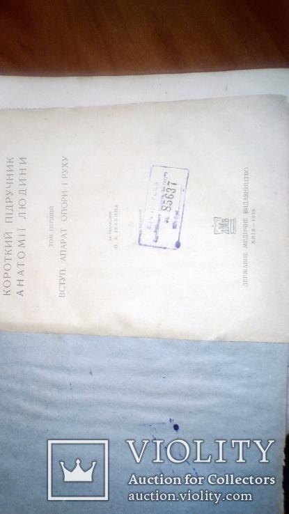 Анатомия людини 1939г, фото №3