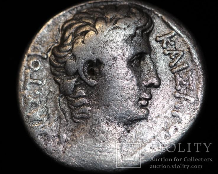Август тетрадрахма Антиохия