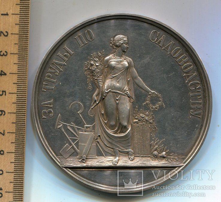Медаль от Российского общества садоводства в Санкт-Петербург, фото №4