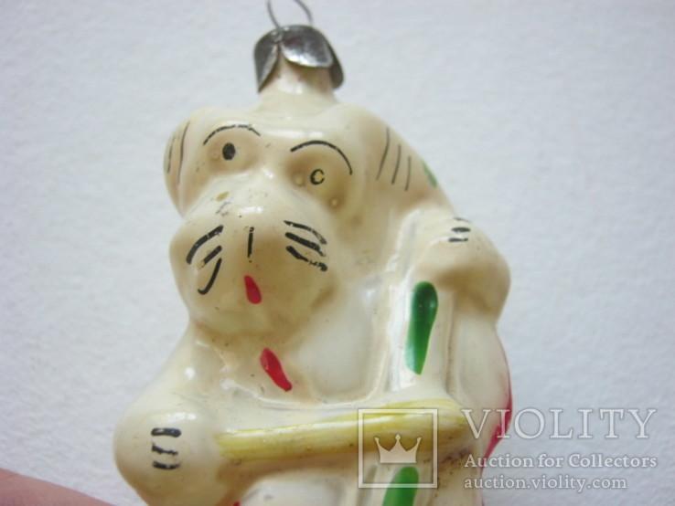Собачка с контрабасом, фото №4