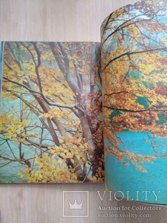 Шовкова косиця (фотоальбом про Карпати) 1985р., фото №8