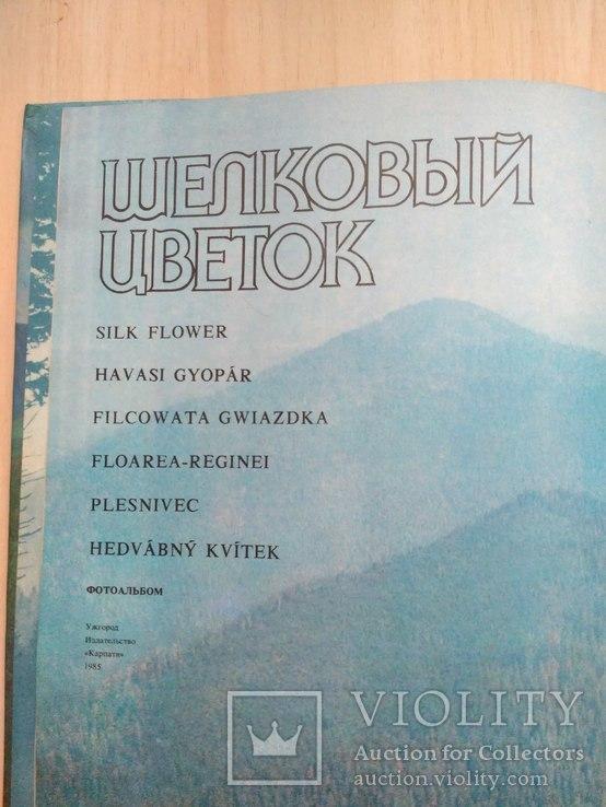 Шовкова косиця (фотоальбом про Карпати) 1985р., фото №12