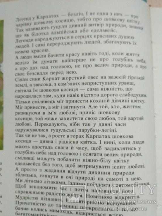 Шовкова косиця (фотоальбом про Карпати) 1985р., фото №13