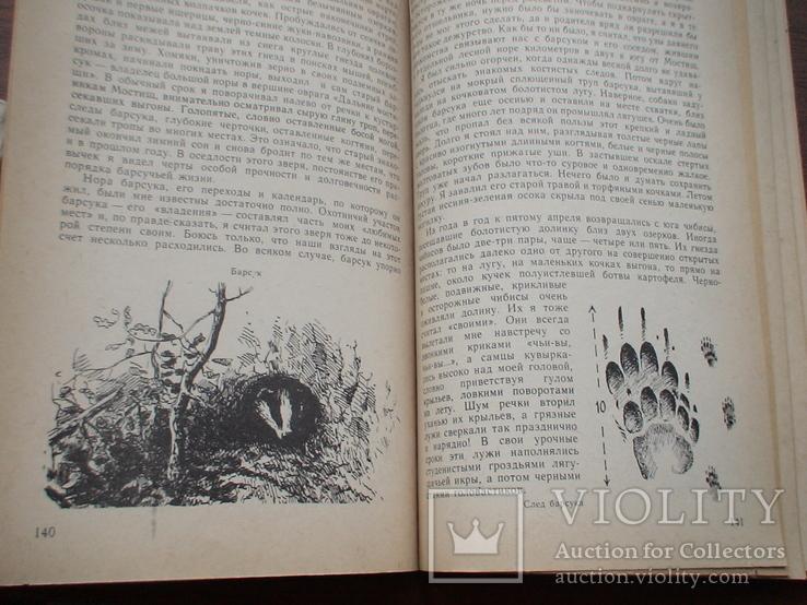 """Формозов А. """"Среди природы"""" 1985р., фото №5"""