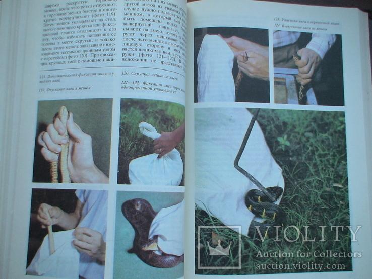 Террариум и его обитатели 1991р., фото №7
