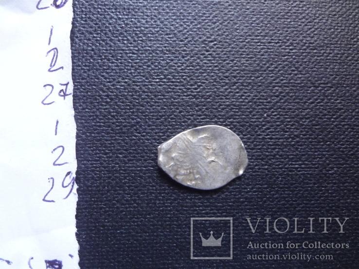 Чешуйка копейка серебро до Петровская    (1.2.29)~, фото №2