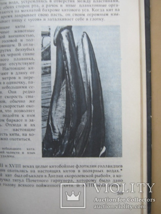 Уильям Кроми Обитатели бездны, фото №5