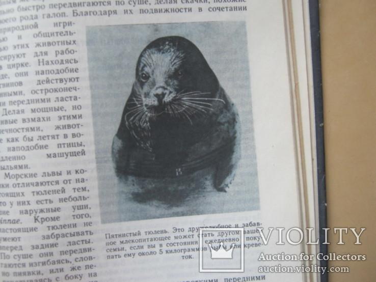Уильям Кроми Обитатели бездны, фото №6