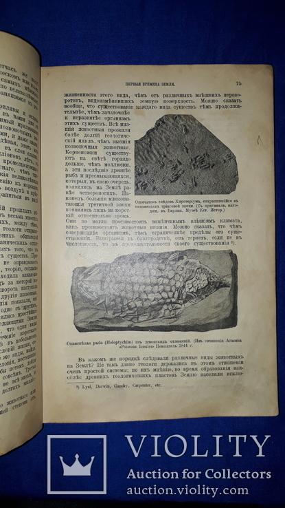 1914 Реклю - Земля в мировом пространстве, фото №10