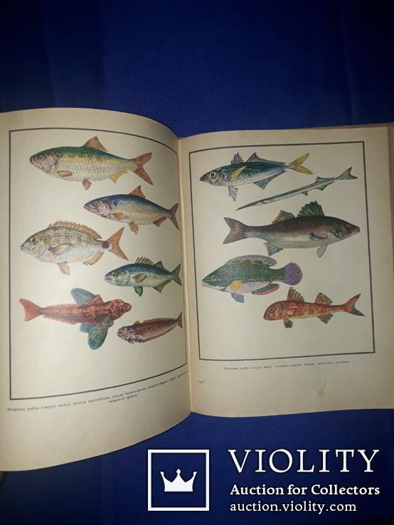 1971 Настольная книга рыболова-спортсмена