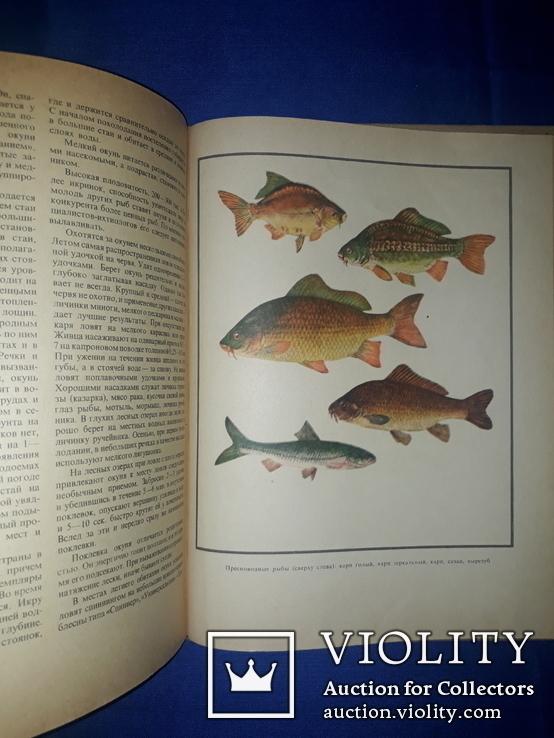 1971 Настольная книга рыболова-спортсмена, фото №5