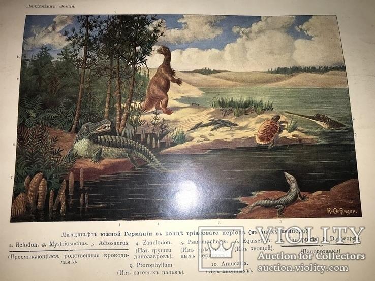 1914 Динозавры Геология  Издание Девриена