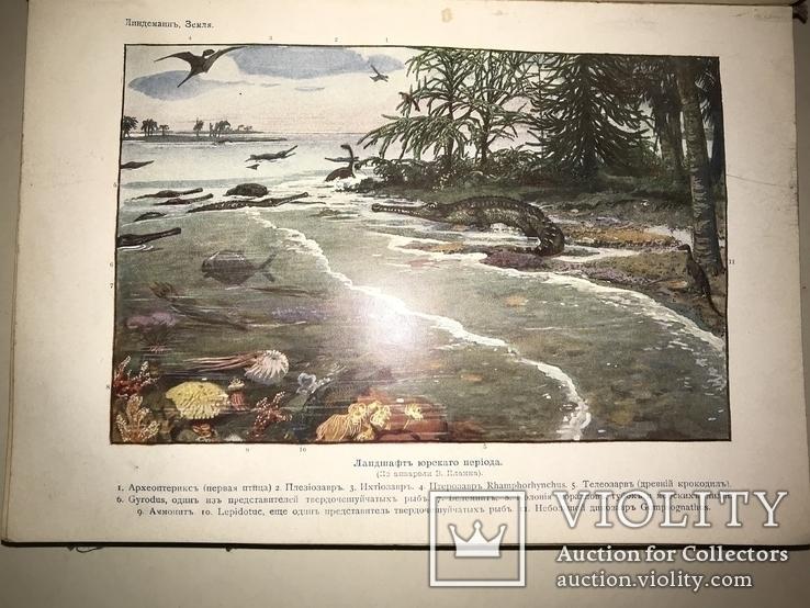 1914 Динозавры Геология  Издание Девриена, фото №3