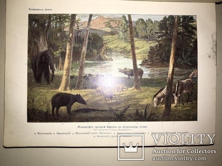 1914 Динозавры Геология  Издание Девриена, фото №4