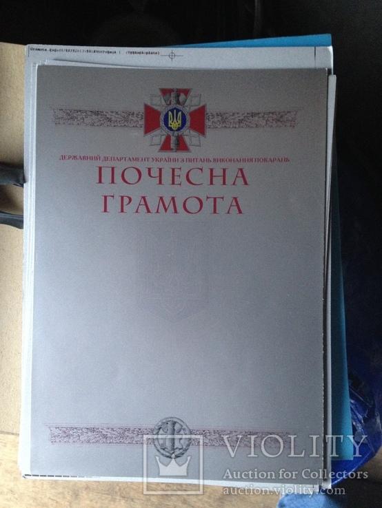 Бланк чистый грамота МВД Тюремный департамент, фото №4