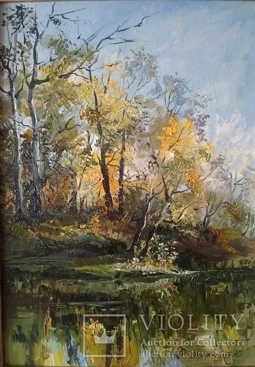 Осень. Ворскла. Солнечный день