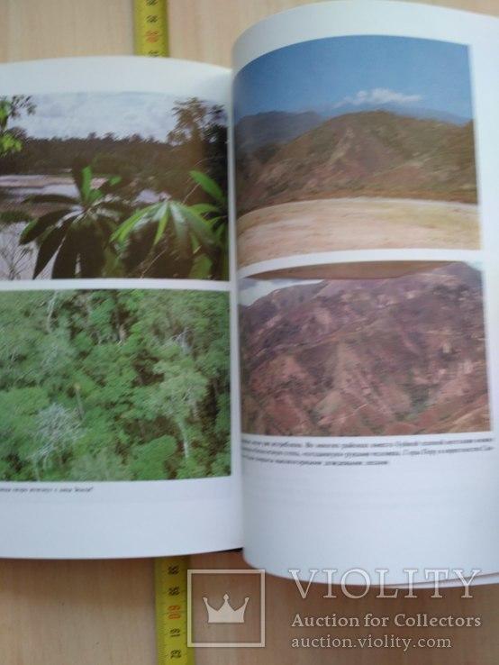"Янош Регеш ""Зеленый ад, исчезающий рай"" (тропический лес) 1989р., фото №9"