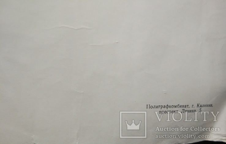 """Школьный портрет """"Гоголь Н.В"""", 59*45.5мм, фото №5"""
