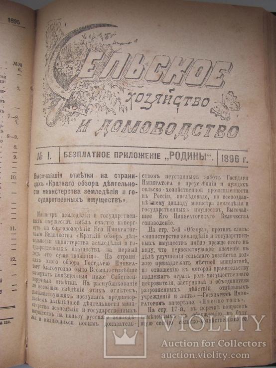 «Сельское Хозяйство и Домоводство». три годовых подписки, фото №11