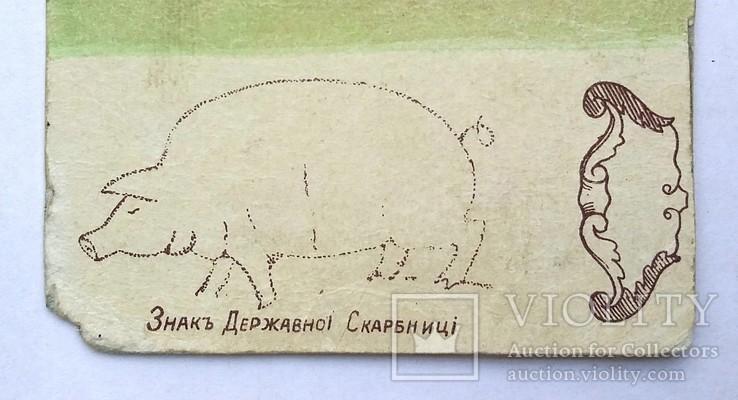 100 карбованцев 1918 года. Агитационная бона. Законченная, в цвете, фото №5
