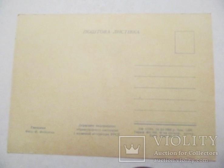 "Г. 1958, открытка ""Гвоздики"", худ. Ф. Федорова, фото №3"