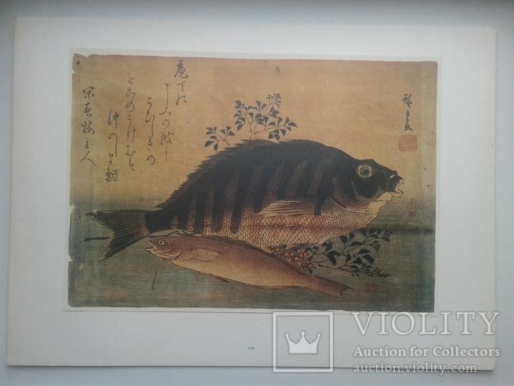 Двадцать семь японских гравюр 18-19 вв., фото №6