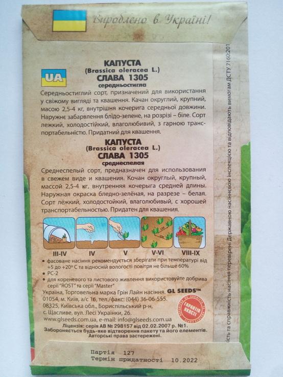 Зерна Капуста Слава, фото №3