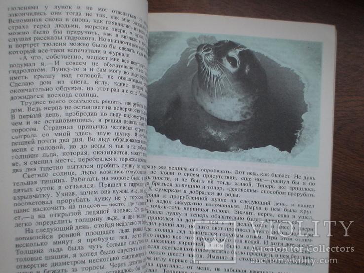 """Орлов """"Острова затеряные во льдах"""" 1979р., фото №7"""