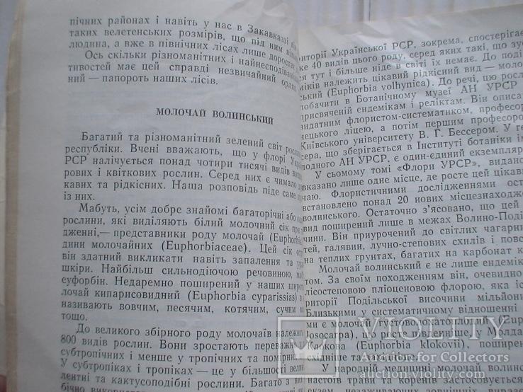 У царстві флори 1978р., фото №6