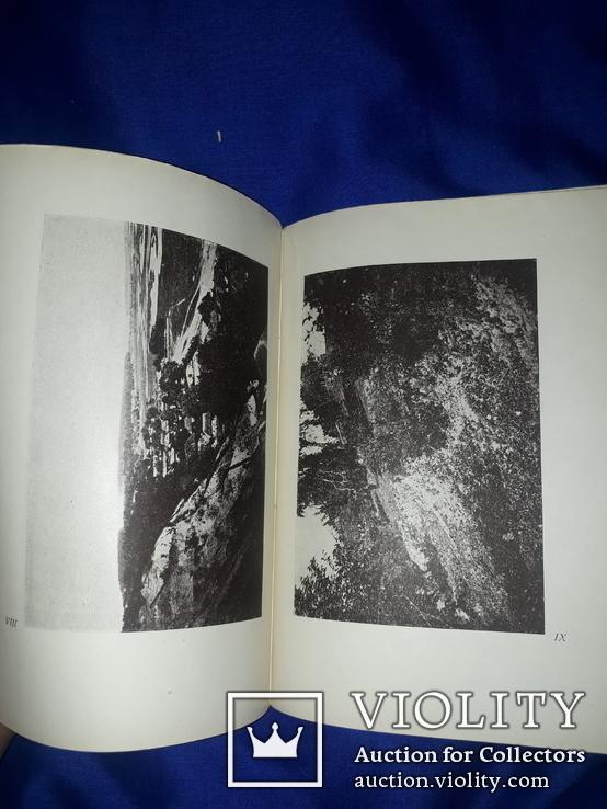 1931 Мiзин. Кістянi вироби мізинської палеолітичної стації в освітленні Федора Вовка, фото №9