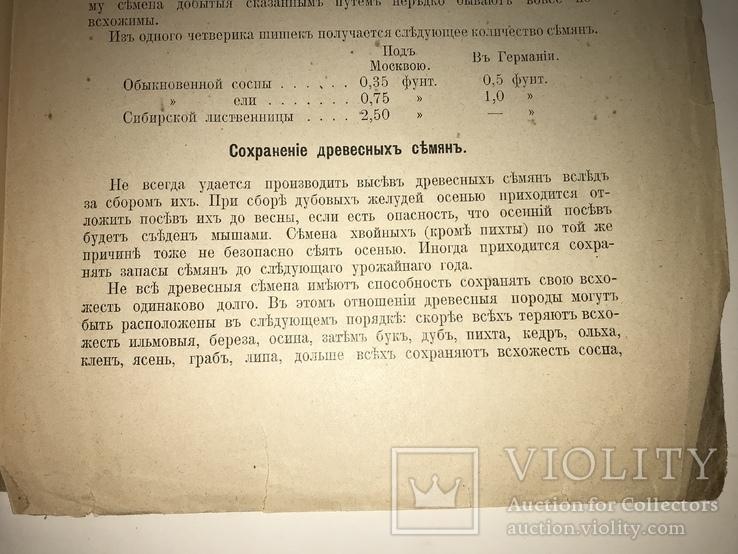 1923 Киевское Издание Сбор хранение семян всего-1000 тир, фото №3