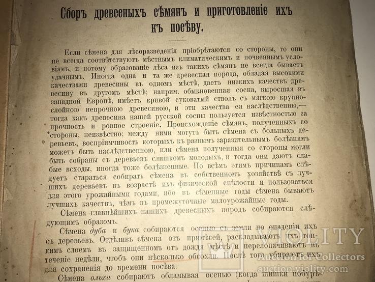 1923 Киевское Издание Сбор хранение семян всего-1000 тир, фото №5