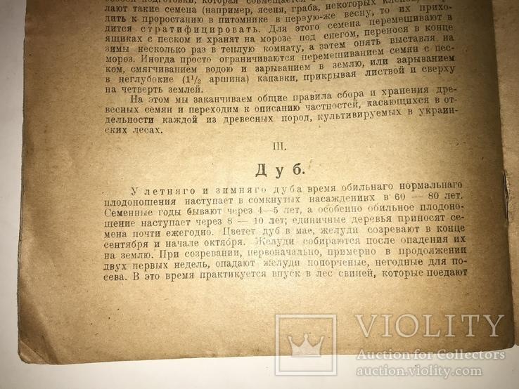 1923 Киевское Издание Сбор хранение семян всего-1000 тир, фото №7